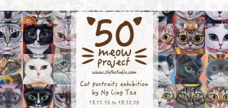 50 Meow Project