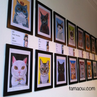50 Meow Project Exhibition